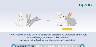 Multi-Agent Behavior Challenge